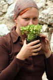 Vulgaris herba van de Zwezerik van de thyme royalty-vrije stock foto's
