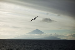 Vulkaan in Kamchatka Stock Foto