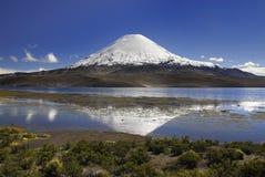 Vulkaan Parinacota en meer Chungara Royalty-vrije Stock Afbeeldingen