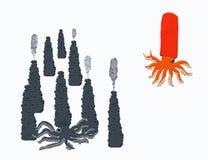 Vulkaanpijlinktvis en spirula royalty-vrije stock afbeeldingen