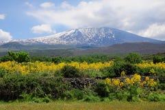 Vulkan Ätna. stockfotos