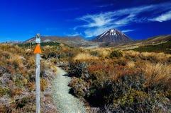 Vulkan Ngauruhoe - Tongariro NP Stockbild