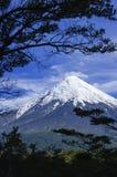 Vulkan Osorno, Chile. Fotografering för Bildbyråer