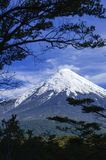 Vulkan Osorno, Chile. Stockbild
