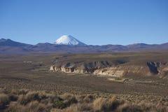 Vulkan på Altiplanoen av nordliga Chile Royaltyfria Bilder