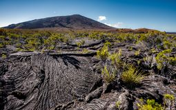 Vulkan Piton de La Fournaise mit Lava strömt Lizenzfreie Stockfotos