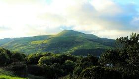 Vulkan som täckas med vegetation , Graciosa, Azores Royaltyfri Fotografi