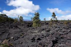 Vulkan-Tätigkeit, Hawaii, USA Stockbild