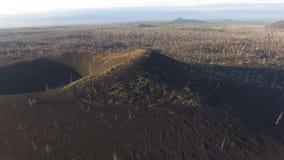 vulkan Wald nach einer vulkanischen Eruption Gebrannter Wald die Lava des Vulkans stock video footage