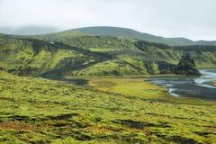 Vulkanisch die landschap met mos wordt behandeld Stock Fotografie