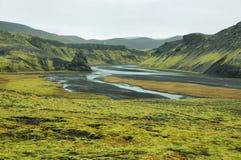 Vulkanisch die landschap met mos wordt behandeld Royalty-vrije Stock Fotografie