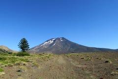 Vulkanisch landschap in Chili Royalty-vrije Stock Fotografie