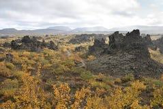 Vulkanisch landschap in het binnenland van IJsland stock foto