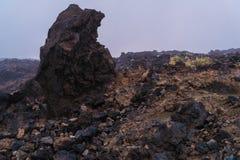 Vulkanisch lavalandschap op Teide Stock Afbeeldingen
