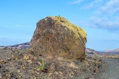 Vulkanische Bombe vor Vulkan Montana Colorada in Lanzarote, stockbild