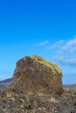 Vulkanische Bombe vor Vulkan Montana Colorada in Lanzarote, lizenzfreies stockbild