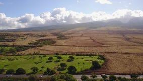 Vulkanische landschappen dichtbij bergenmauna loa met actieve krater en kleine cellen van exotische aard onder bewolkte hemel  stock videobeelden