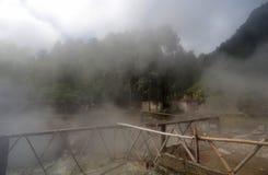 Vulkanische Quellpunkte Furnas lizenzfreie stockbilder