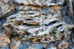 Vulkanische Rots De close-up van de steentextuur met witte en bruine tint Selectieve nadruk stock fotografie