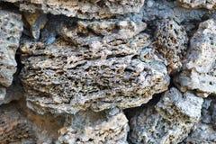 Vulkanische Rots De close-up van de steentextuur met witte en bruine tint Selectieve nadruk royalty-vrije stock afbeelding