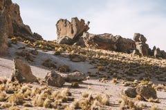Vulkanische rotsvormingen stock afbeeldingen