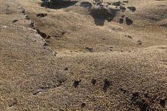 Vulkanische Steinbildungen in Nationalpark Timanfaya in Lanzarot Lizenzfreies Stockfoto