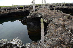 Vulkanische Vorming Royalty-vrije Stock Afbeelding