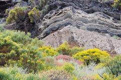 Vulkanischer Strand. stockfoto