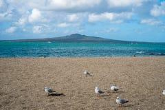 Vulkanisk ö som ses från stranden Fotografering för Bildbyråer