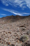Vulkanisk bergtoppmöte på den Fuerteventura ön Royaltyfria Bilder