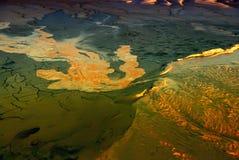 Vulkanisk gyttja i ljus av solnedgången Arkivbilder