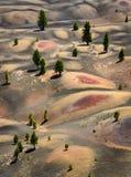 vulkanisk lassen nationalpark Arkivbilder