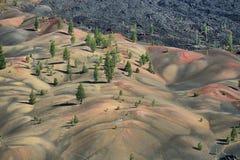 vulkanisk lassen nationalpark Arkivfoto