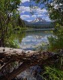 Vulkanisk nationalpark för journal och Manzanita för sjö, Lassen Fotografering för Bildbyråer