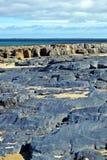 vulkanisk strandrock Royaltyfri Foto