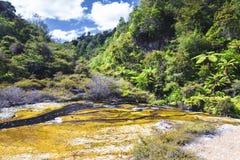 Vulkaniska aktiviteter på waimanguen Arkivbilder
