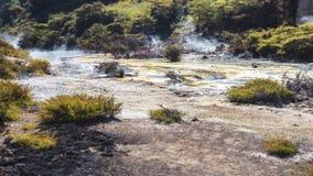 Vulkaniska aktiviteter på waimanguen Royaltyfria Foton