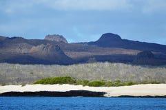 Vulkaniska Cinder Cones i Galapagos Royaltyfri Fotografi