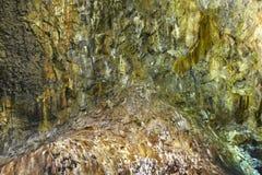 Vulkaniskt grottagalleri i den Terceira ön azerbaijan Algar gör Carva Royaltyfri Fotografi