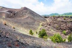 Vulkaniskt landskap med gamla krater av den Etna monteringen Fotografering för Bildbyråer