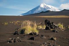 Vulkaniskt landskap på Kamchatka royaltyfri foto