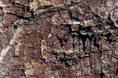 Vulkaniskt vagga detaljer och texturer arkivbild