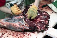Vulling van hertenkarkas stock afbeeldingen