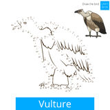 Vulture bird learn to draw vector. Vulture learn birds educational game learn to draw vector illustration Royalty Free Stock Photos
