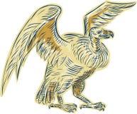Vulture Buzzard Etching Stock Photo