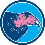 Vulture California Condor head viewed from side Stock Image