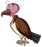 Vulture with dizzy face Royalty Free Stock Image