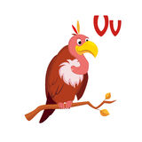 Vulture. Funny Alphabet, Animal Vector Illustration Royalty Free Stock Images