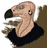 Vulture head. Colored vector in EPS 10 format Stock Image