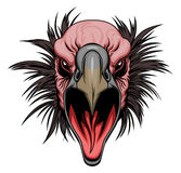 Vulture head. Screaming vulture head on the white background stock illustration